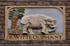 witte-oliphant1
