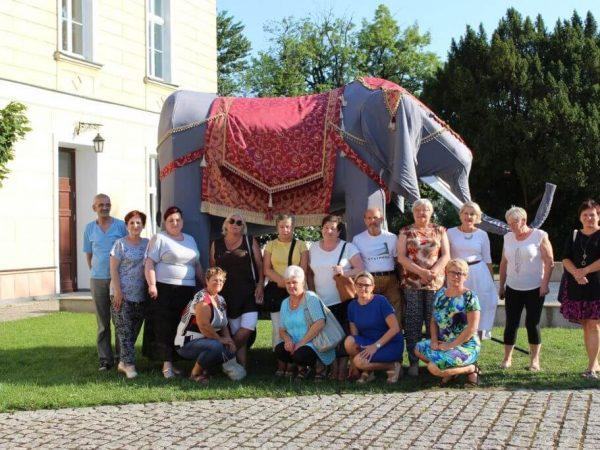 TTK-slon-trzebiatow (19)