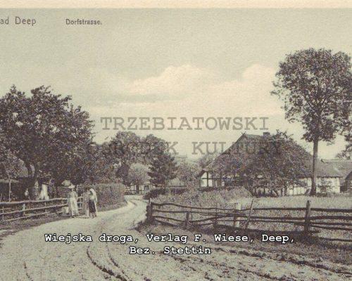 stare-mrzezyno (71)
